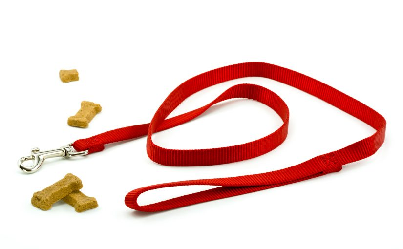 Tired of Boring Promotional Products? Try a Customized Dog Leash