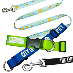 Pet Leads & Collars